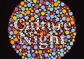 Cork Culture Night 2012