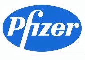 Pfizer Little Island staff complete module in chemical process safety